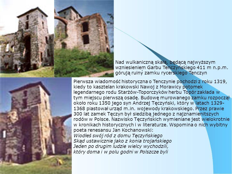 Nad wulkaniczną skałą, będącą najwyższym wzniesieniem Garbu Tenczyńskiego 411 m n.p.m. górują ruiny zamku rycerskiego Tenczyn