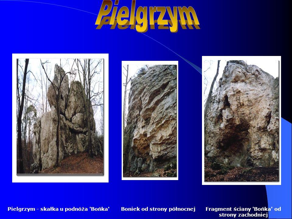 Pielgrzym Pielgrzym - skałka u podnóża Bońka