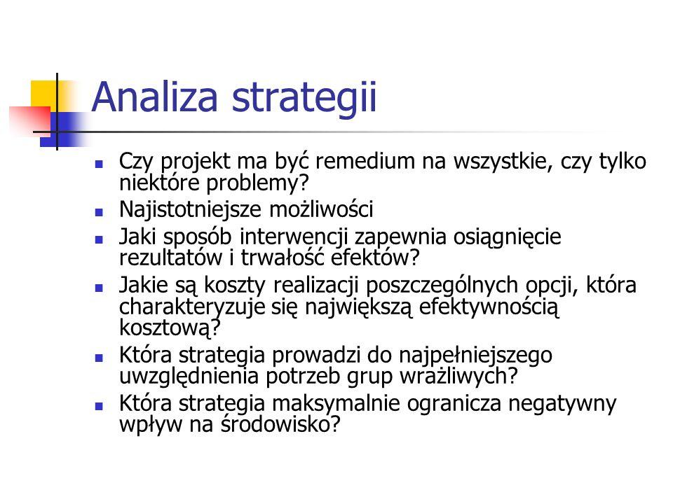 Analiza strategii Czy projekt ma być remedium na wszystkie, czy tylko niektóre problemy Najistotniejsze możliwości.