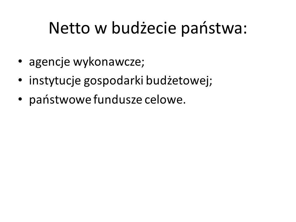 Netto w budżecie państwa: