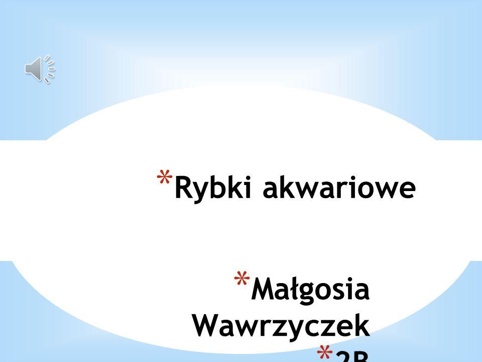 Małgosia Wawrzyczek 2B Zapraszam na atlas ryb akwariowych