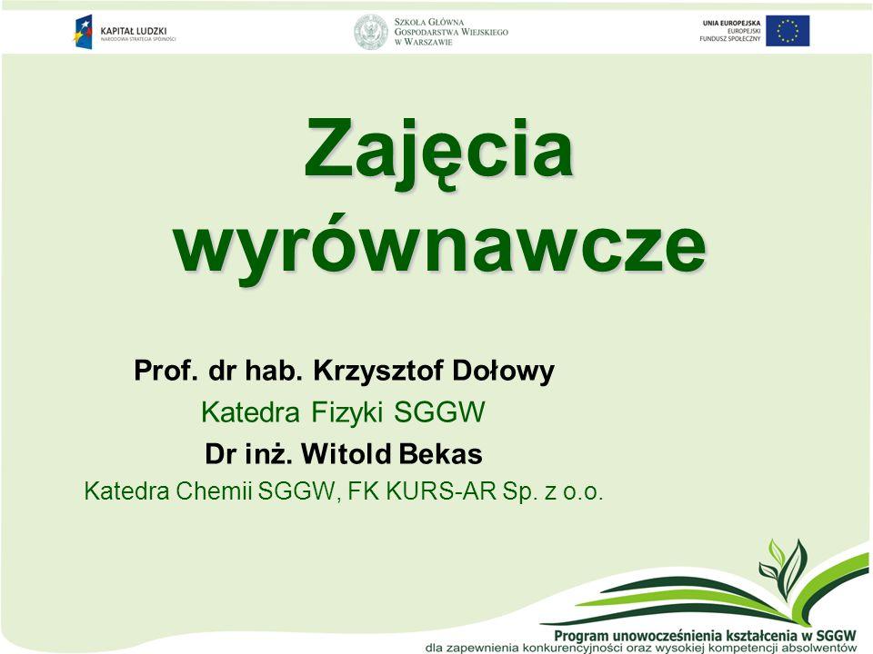 Prof. dr hab. Krzysztof Dołowy
