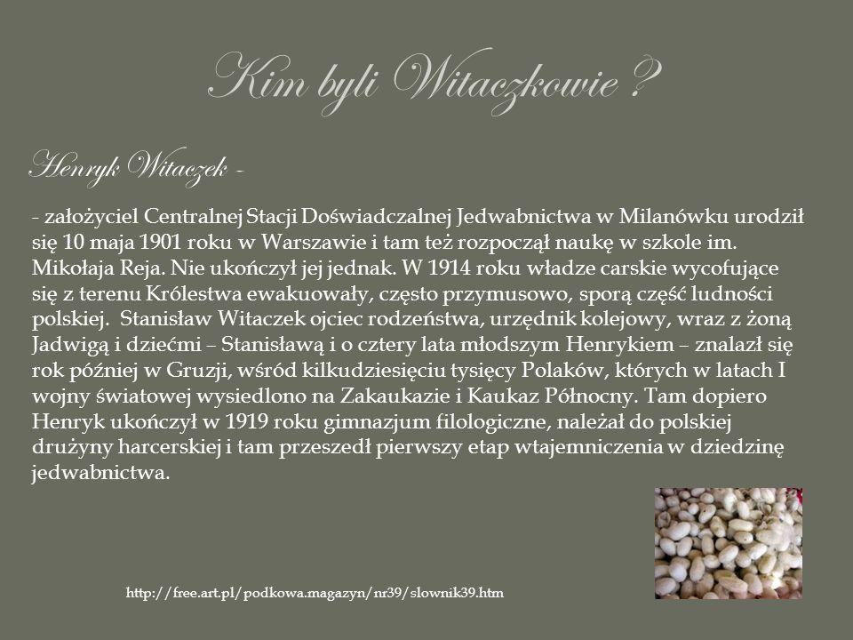 Kim byli Witaczkowie Henryk Witaczek -