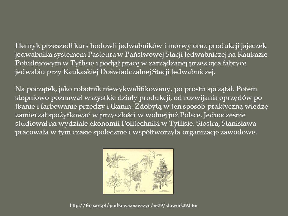 Henryk przeszedł kurs hodowli jedwabników i morwy oraz produkcji jajeczek jedwabnika systemem Pasteura w Państwowej Stacji Jedwabniczej na Kaukazie Południowym w Tyflisie i podjął pracę w zarządzanej przez ojca fabryce jedwabiu przy Kaukaskiej Doświadczalnej Stacji Jedwabniczej. Na początek, jako robotnik niewykwalifikowany, po prostu sprzątał. Potem stopniowo poznawał wszystkie działy produkcji, od rozwijania oprzędów po tkanie i farbowanie przędzy i tkanin. Zdobytą w ten sposób praktyczną wiedzę zamierzał spożytkować w przyszłości w wolnej już Polsce. Jednocześnie studiował na wydziale ekonomii Politechniki w Tyflisie. Siostra, Stanisława pracowała w tym czasie społecznie i współtworzyła organizacje zawodowe.
