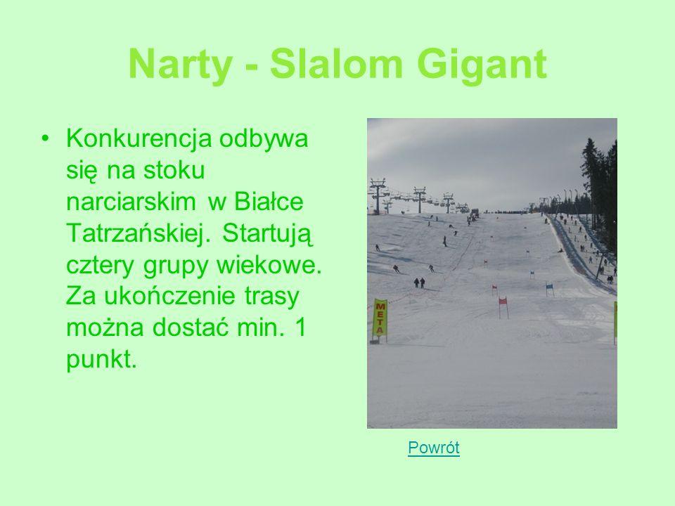 Narty - Slalom Gigant