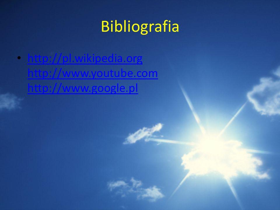 Bibliografia http://pl.wikipedia.org http://www.youtube.com http://www.google.pl