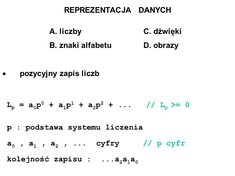 B. znaki alfabetu D. obrazy