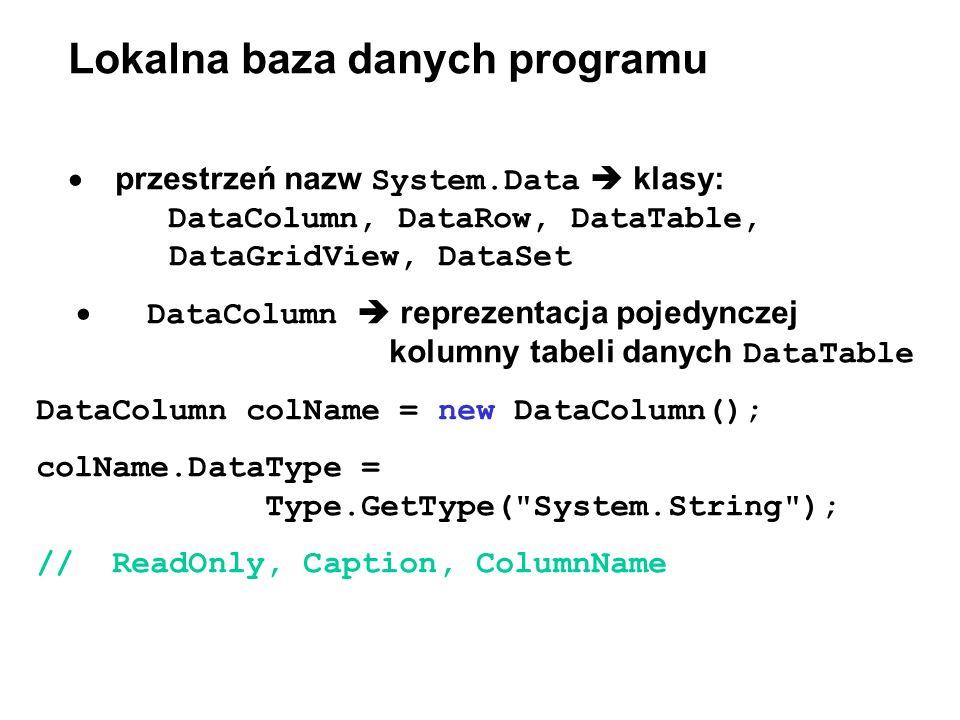 Lokalna baza danych programu