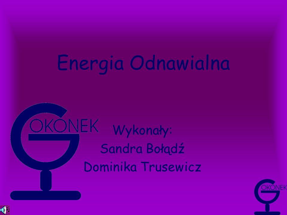 Wykonały: Sandra Bołądź Dominika Trusewicz