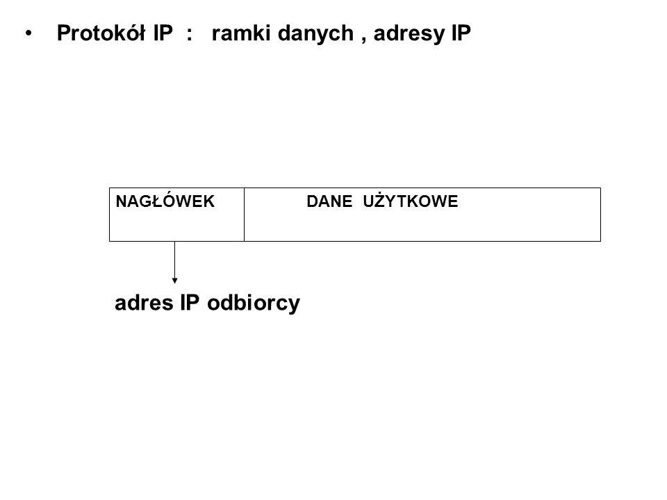 Protokół IP : ramki danych , adresy IP