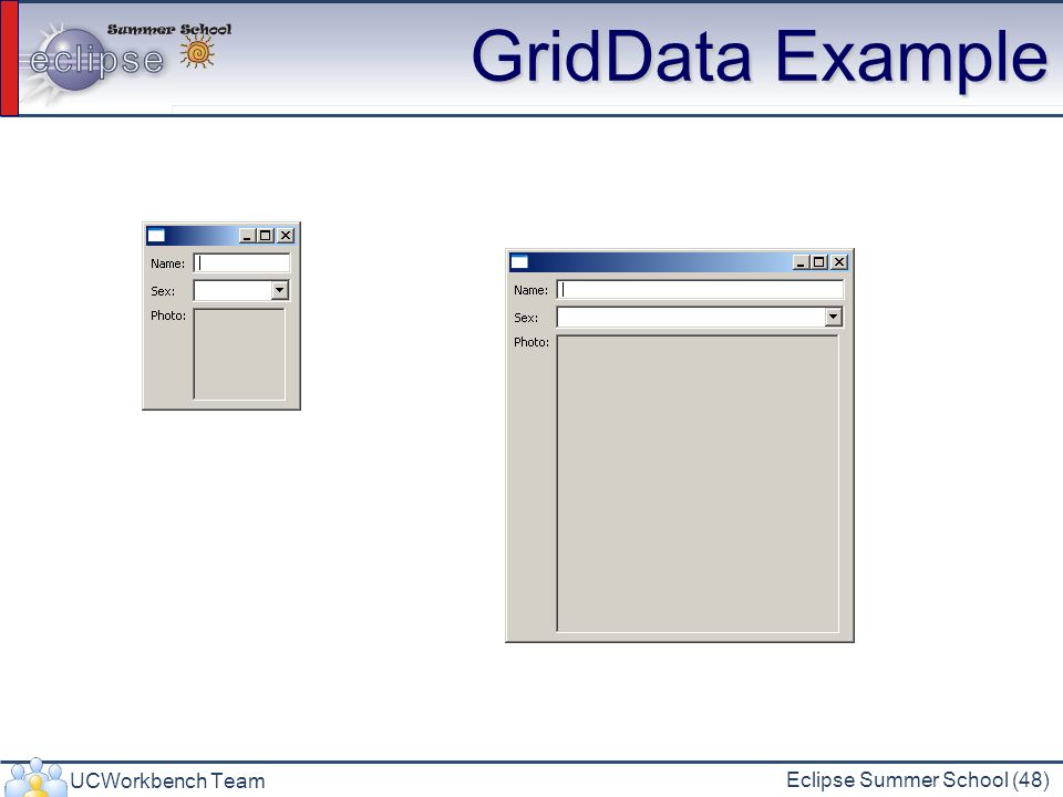 GridData Example