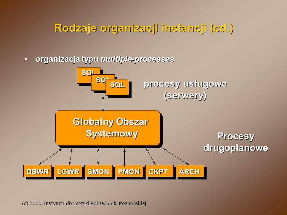 Rodzaje organizacji instancji (cd.)