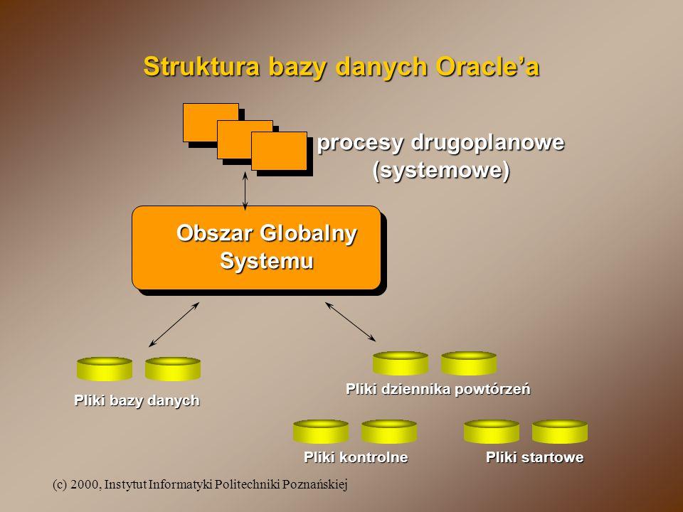 Struktura bazy danych Oracle'a Pliki dziennika powtórzeń