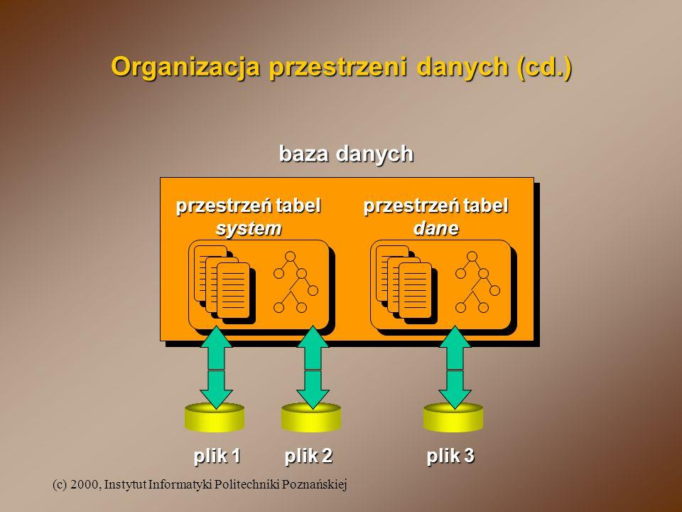 Organizacja przestrzeni danych (cd.)