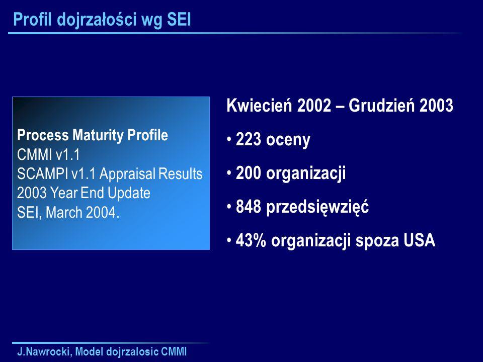 Profil dojrzałości wg SEI