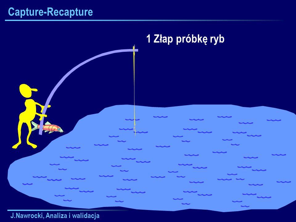 Capture-Recapture 1 Złap próbkę ryb J.Nawrocki, Analiza i walidacja
