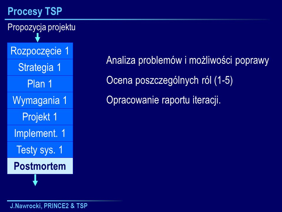 Analiza problemów i możliwości poprawy Ocena poszczególnych ról (1-5)