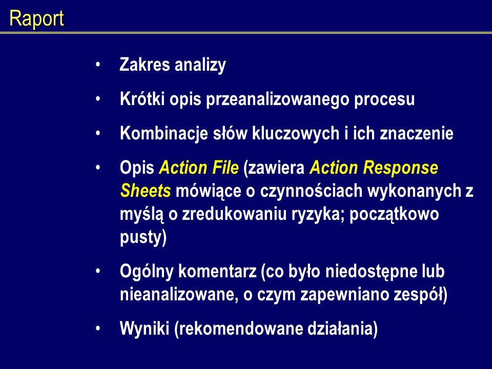 Raport Zakres analizy Krótki opis przeanalizowanego procesu