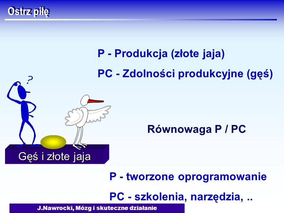 J.Nawrocki, Mózg i skuteczne działanie