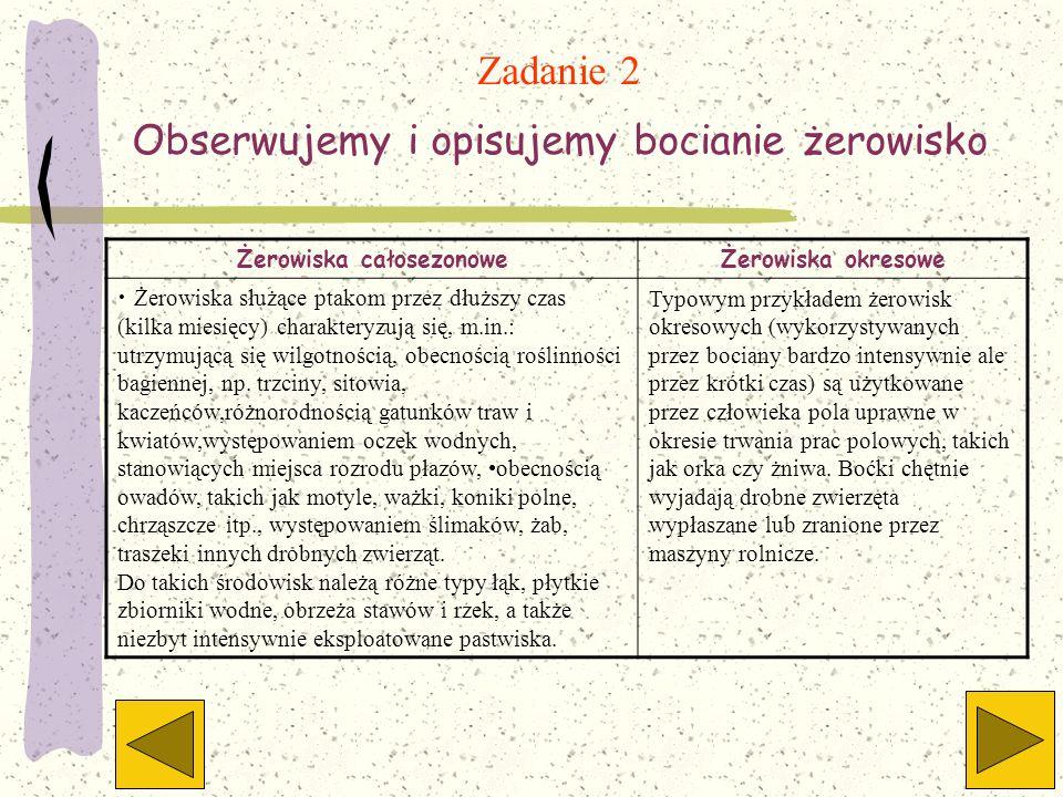 Zadanie 2 Obserwujemy i opisujemy bocianie żerowisko