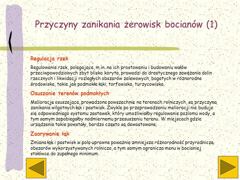 Przyczyny zanikania żerowisk bocianów (1)
