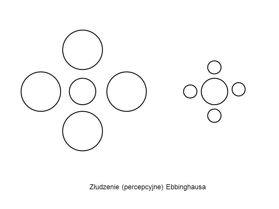 Złudzenie (percepcyjne) Ebbinghausa
