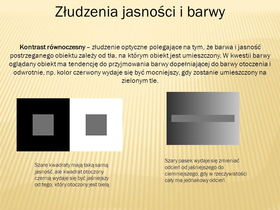 Złudzenia jasności i barwy