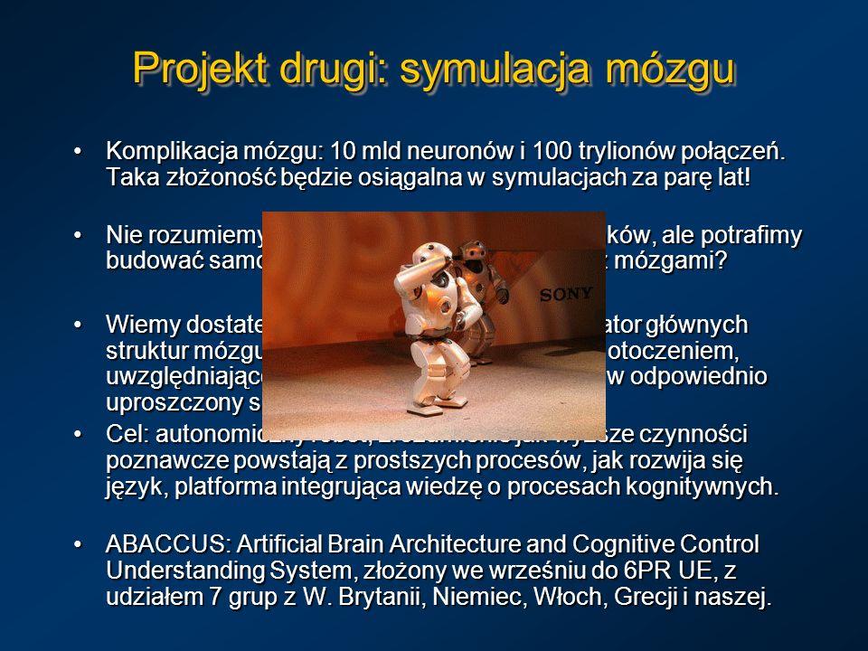 Projekt drugi: symulacja mózgu