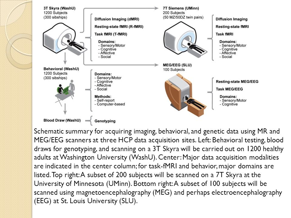 Schematic summary for acquiring imaging, behavioral, and genetic data using MR and MEG/EEG scanners at three HCP data acquisition sites.