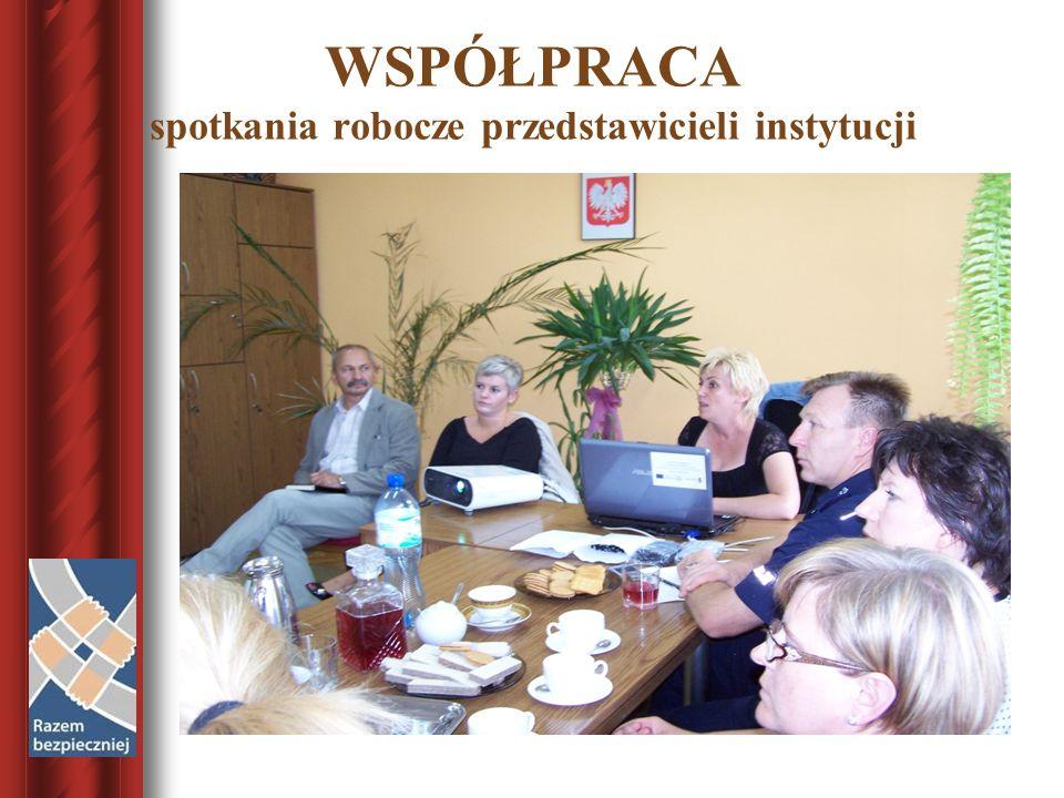 WSPÓŁPRACA spotkania robocze przedstawicieli instytucji