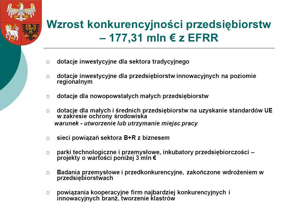 Wzrost konkurencyjności przedsiębiorstw – 177,31 mln € z EFRR