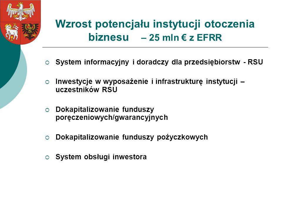 Wzrost potencjału instytucji otoczenia biznesu – 25 mln € z EFRR