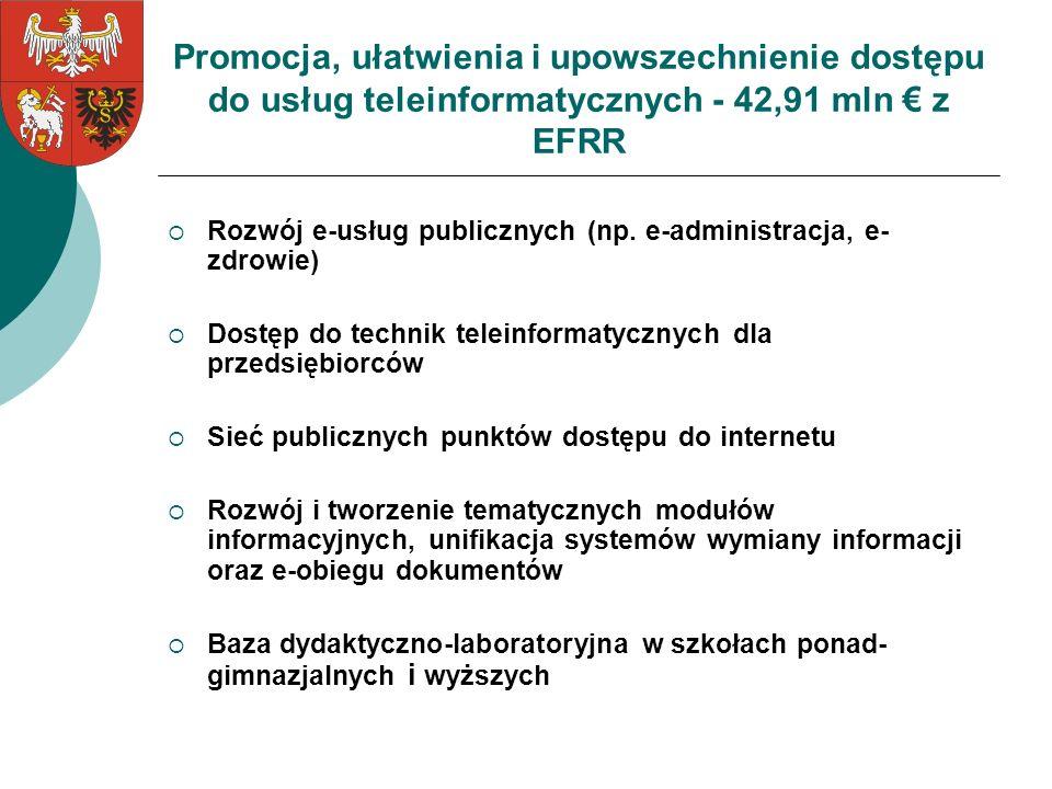 Promocja, ułatwienia i upowszechnienie dostępu do usług teleinformatycznych - 42,91 mln € z EFRR