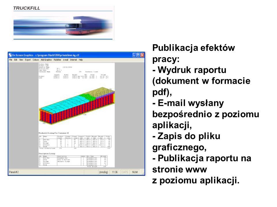Publikacja efektów pracy: