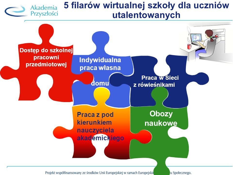 5 filarów wirtualnej szkoły dla uczniów utalentowanych
