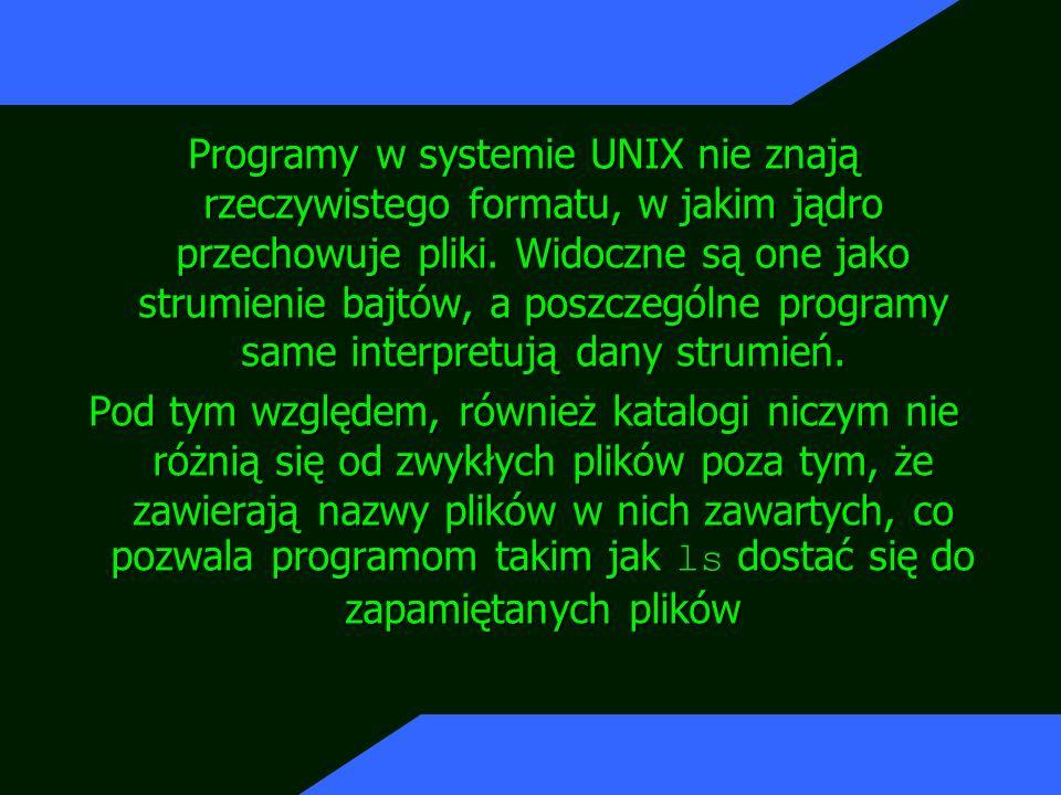 Programy w systemie UNIX nie znają rzeczywistego formatu, w jakim jądro przechowuje pliki. Widoczne są one jako strumienie bajtów, a poszczególne programy same interpretują dany strumień.