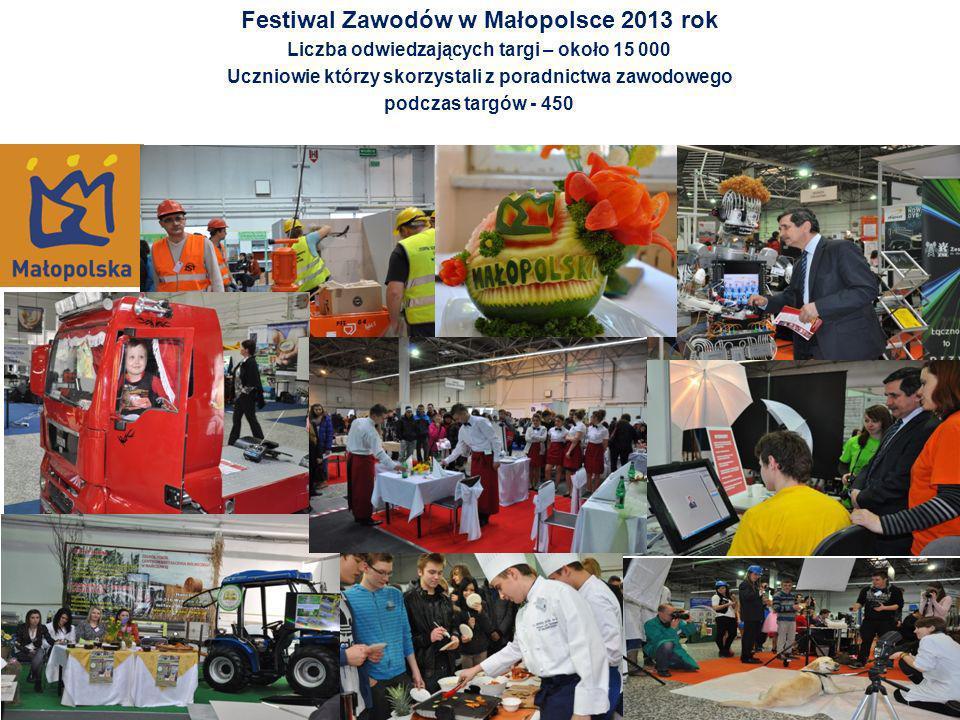 Festiwal Zawodów w Małopolsce 2013 rok