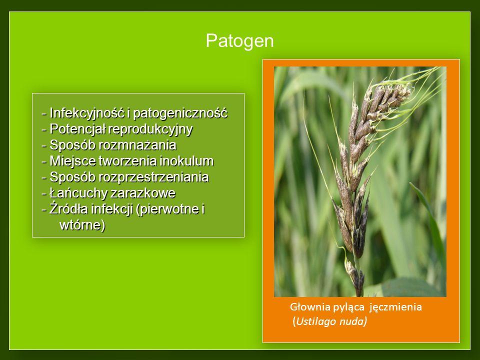 Patogen - Infekcyjność i patogeniczność - Potencjał reprodukcyjny