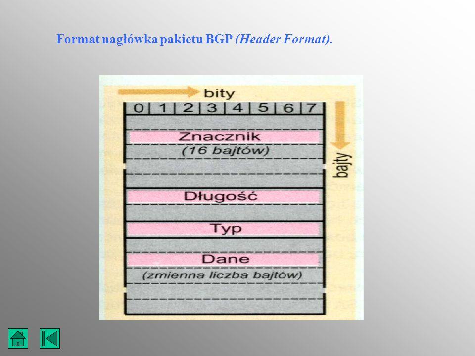 Format nagłówka pakietu BGP (Header Format).