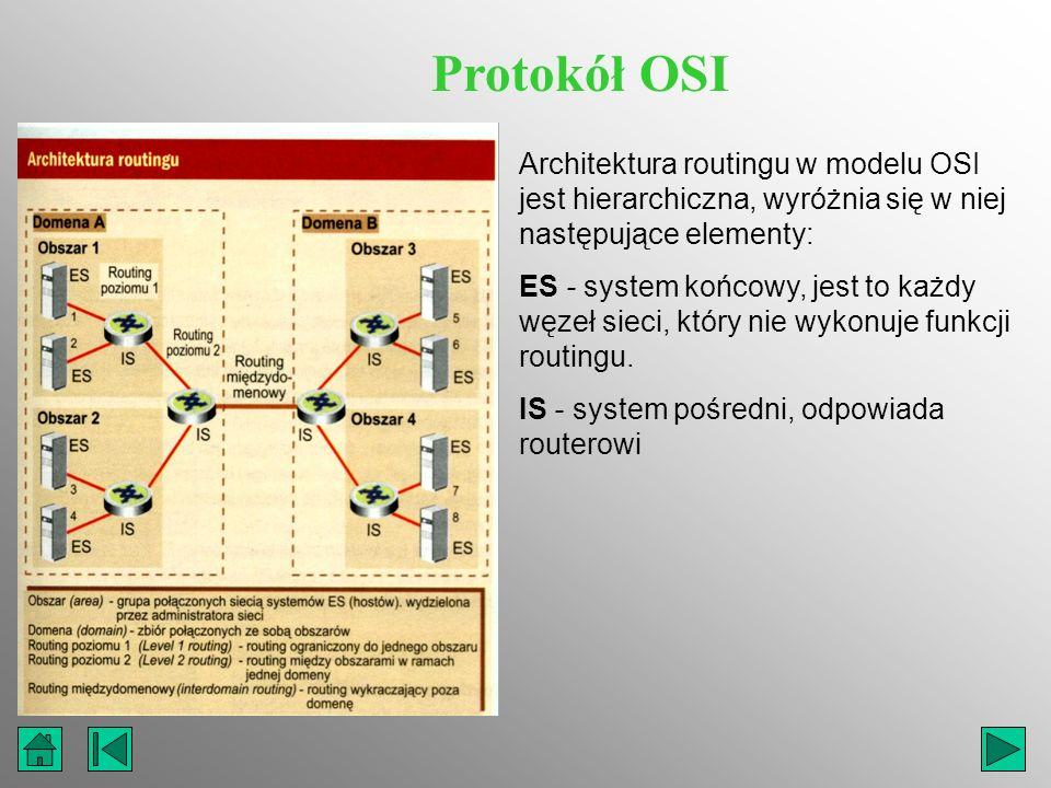 Protokół OSI Architektura routingu w modelu OSI jest hierarchiczna, wyróżnia się w niej następujące elementy: