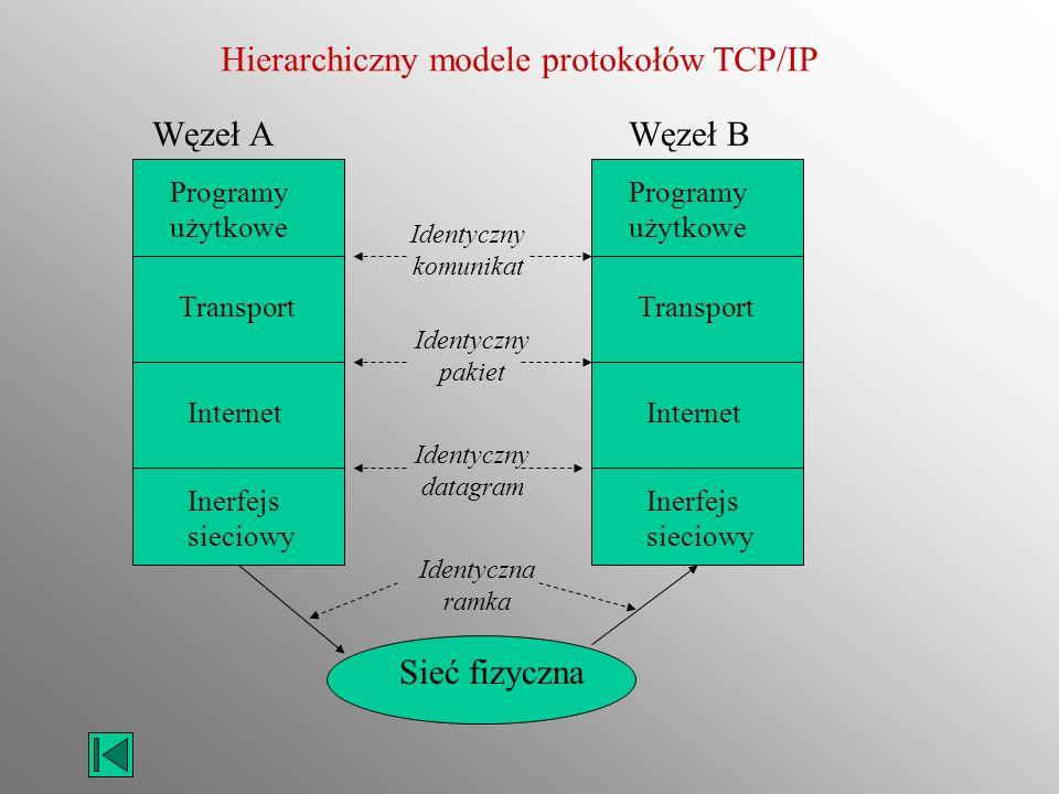 Hierarchiczny modele protokołów TCP/IP