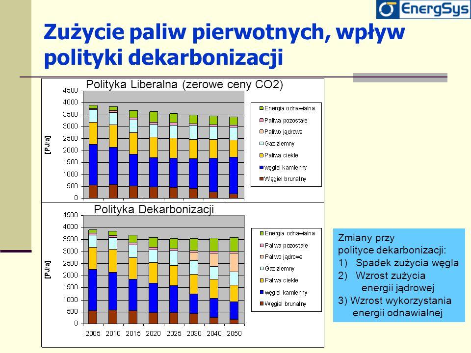 Zużycie paliw pierwotnych, wpływ polityki dekarbonizacji