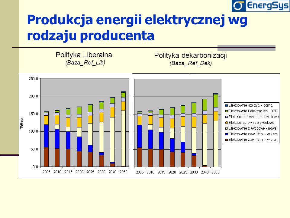 Produkcja energii elektrycznej wg rodzaju producenta