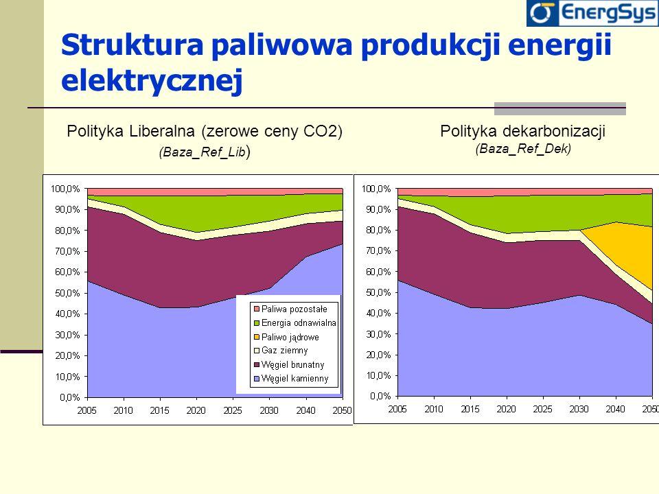 Struktura paliwowa produkcji energii elektrycznej
