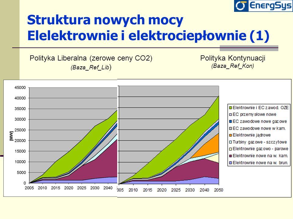 Struktura nowych mocy Elelektrownie i elektrociepłownie (1)