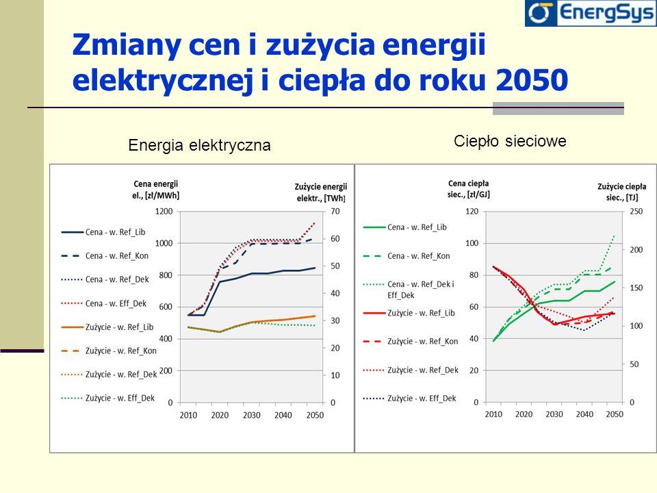 Zmiany cen i zużycia energii elektrycznej i ciepła do roku 2050