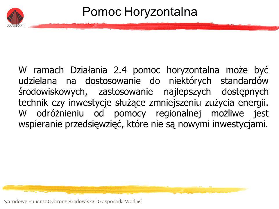 Pomoc Horyzontalna