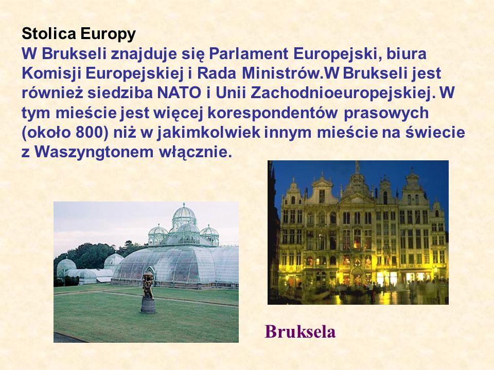 Stolica Europy W Brukseli znajduje się Parlament Europejski, biura Komisji Europejskiej i Rada Ministrów.W Brukseli jest również siedziba NATO i Unii Zachodnioeuropejskiej. W tym mieście jest więcej korespondentów prasowych (około 800) niż w jakimkolwiek innym mieście na świecie z Waszyngtonem włącznie.
