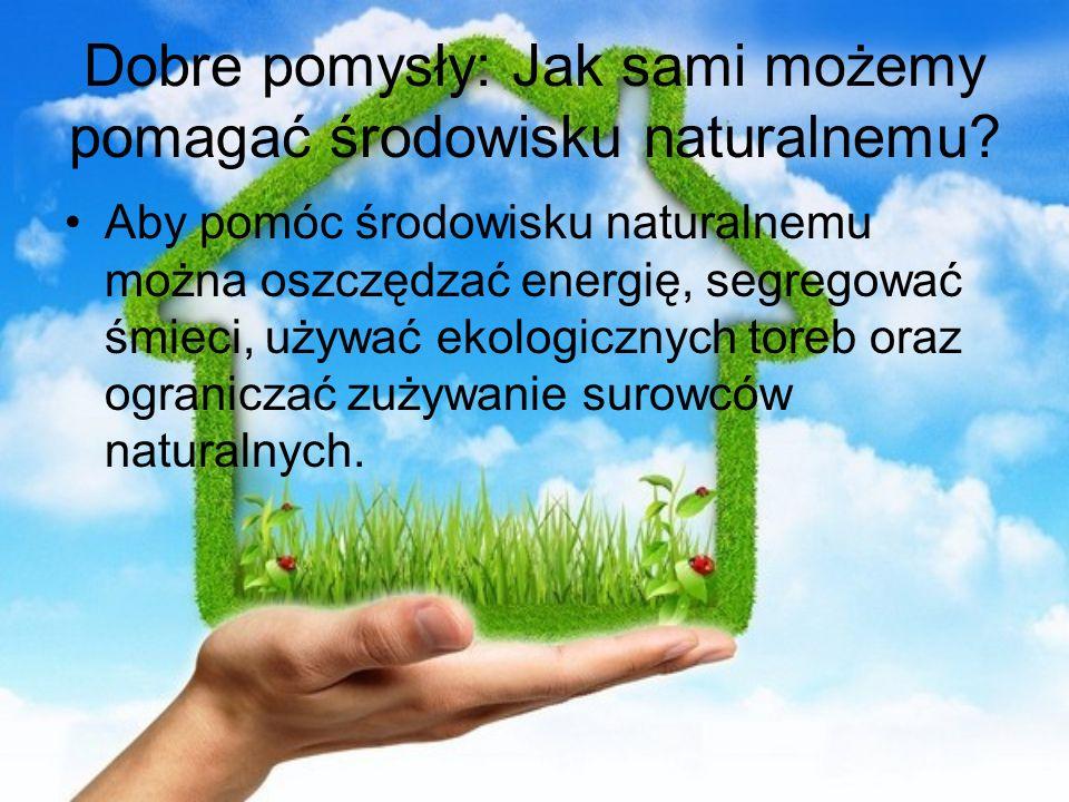 Dobre pomysły: Jak sami możemy pomagać środowisku naturalnemu