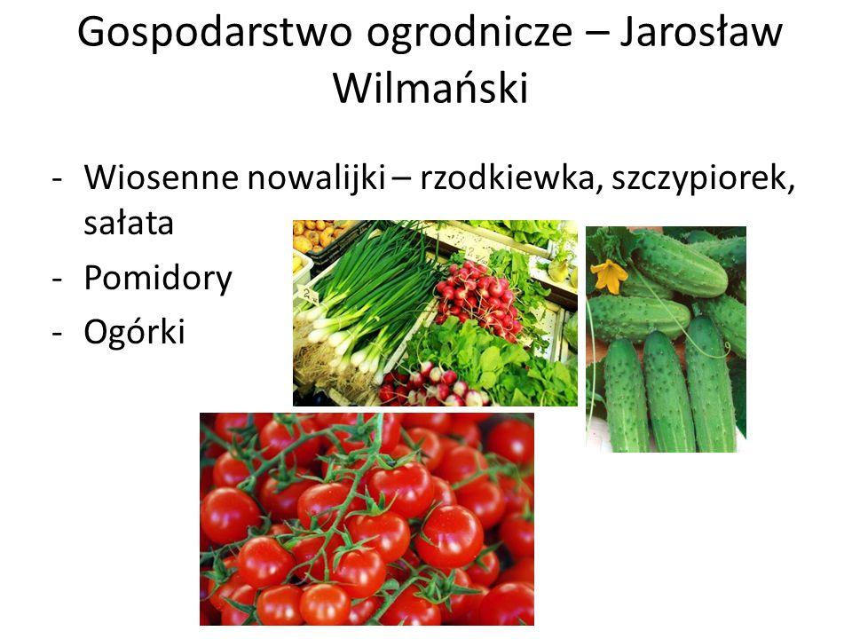 Gospodarstwo ogrodnicze – Jarosław Wilmański